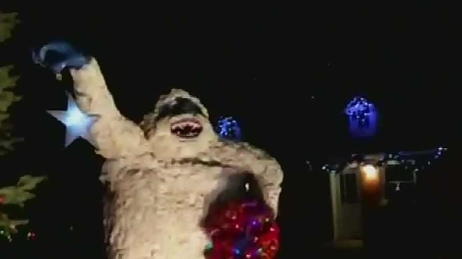 CTV Windsor: Amherstburg River Lights Festival