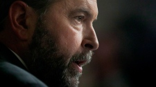 NDP leader Thomas Mulcair comments on the federal budget in the Foyer of the House of Commons on Parliament Hill in Ottawa Thursday March 29, 2012. (Adrian Wyld / THE CANADIAN PRESS)
