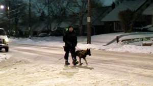 CTV Kitchener: Man escapes from police custody