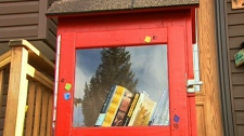 A 'little library' made by Calgary artist Cheri Macaulay is pictured.