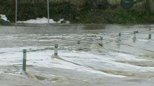 CTV Kitchener: Flood warnings issued