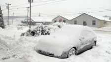 New Brunswick hit with 30 cm of snow