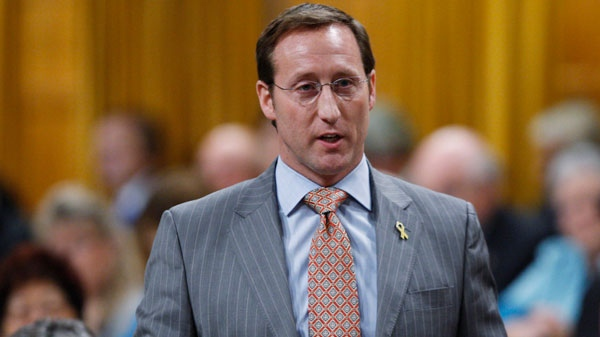 Defence Minister Peter MacKay rises during Question Period in the House of Commons in Ottawa, Wednesday, April 4, 2012. (Adrian Wyld / THE CANADIAN PRESS)