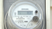 A Kamloops resident was billed almost $5,000 by BC Hydro due to a faulty smart meter. April 9, 2012. (CTV)
