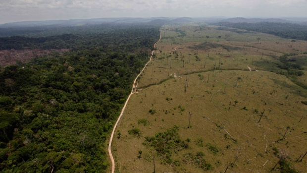 A deforested area in Brazil