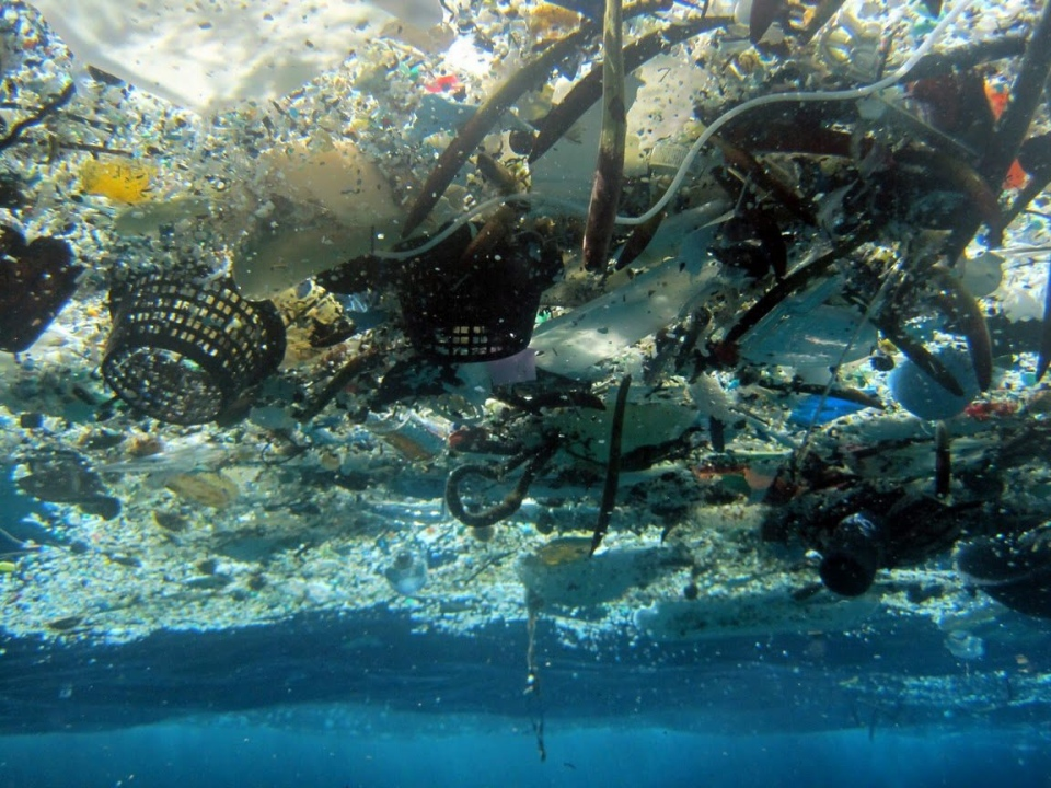 This 2008 photo provided by NOAA Pacific Islands Fisheries Science Center shows plastic debris in Hanauma Bay, Hawaii. (NOAA Pacific Islands Fisheries Science Center / AP Photo)