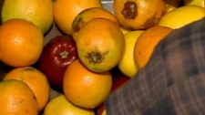 Marked oranges