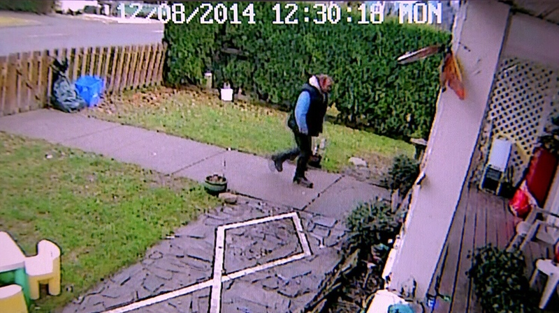 A Grinch-like thief was caught on camera stealing a pricey Christmas decoration from a Chilliwack family's yard. Dec. 10, 2014. (CTV)