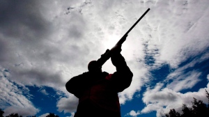A rifle owner checks the sight of his rifle at a hunting camp property in rural Ontario west of Ottawa on Sept. 15, 2010. (Sean Kilpatrick / THE CANADIAN PRESS)