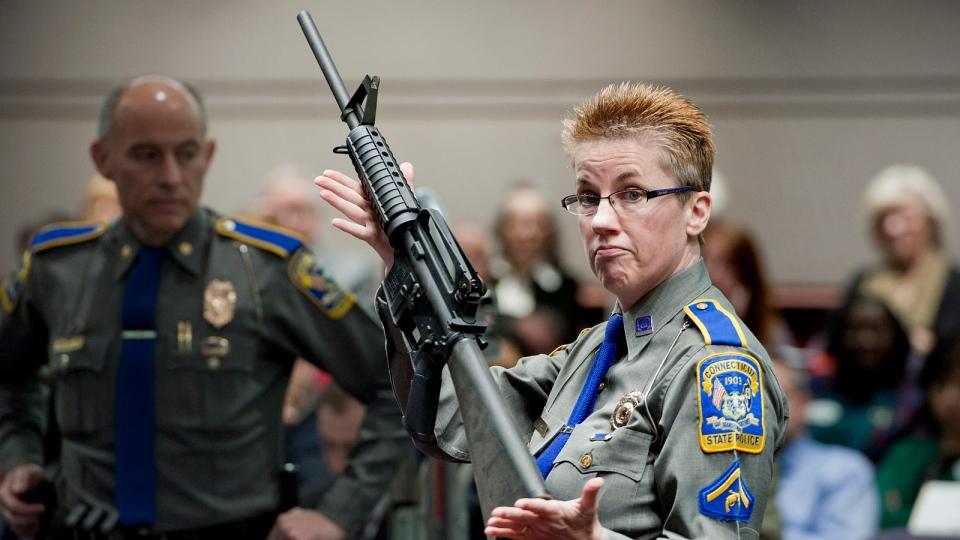 Sandy Hook school shooting lawsuit