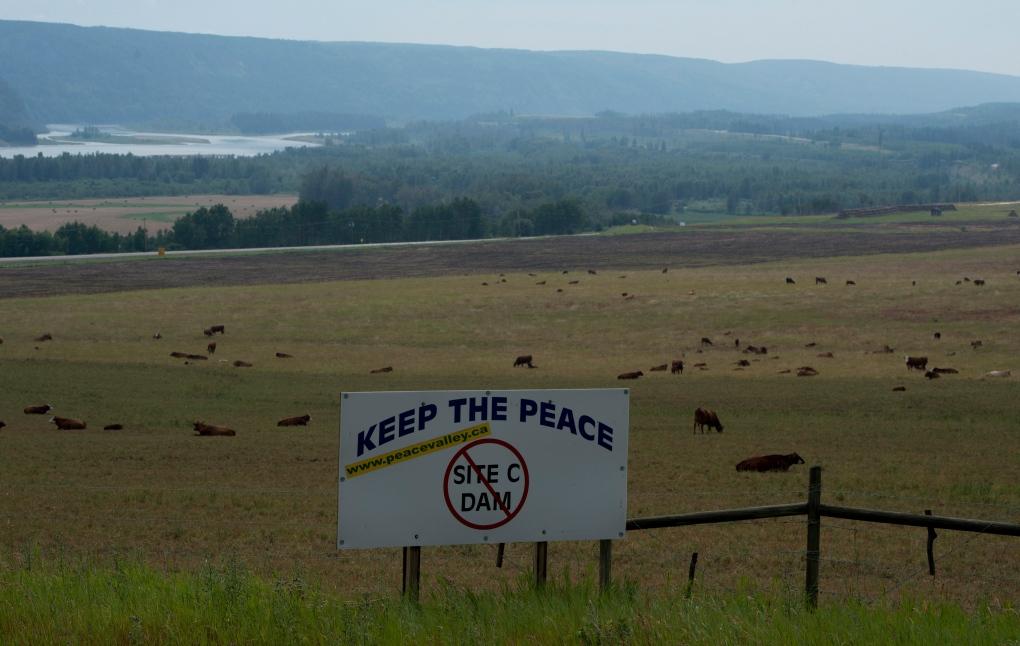 Site C Dam - protest sign