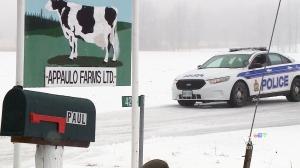 CTV Ottawa: Carp farmer loses arms