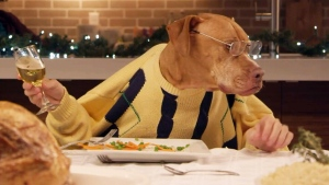 Canada AM: Dinner's gone to the dogs