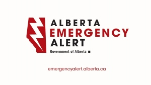 Amber Alert: 3 children reportedly abducted in Edm