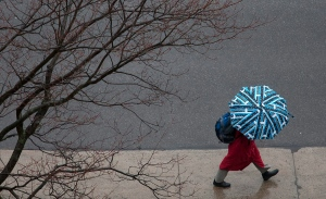 A windy and rainy day in downtown Ottawa on Sunday, March 14, 2010. (The Canadian Press / Pawel Dwulit)