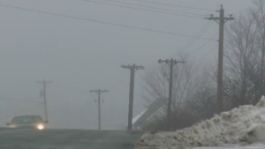 Thousands of people in Nova Scotia, P.E.I. and New Brunswick were in the dark this morning after powerful winds blew through the region, knocking out power.