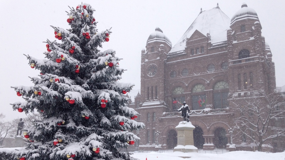 A snowy Queen's Park is shown on Thursday, Dec. 11, 2014. (George Stamou / CTV Toronto)