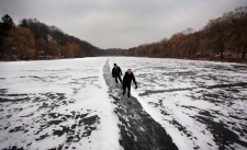 High Park winter