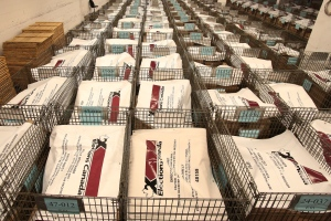 Rows of pallets with supplies for polling stations wait for shipment at Elections Canada in Ottawa on Thursday, Nov. 20, 2014. (Fred Chartrand / THE CANADIAN PRESS)