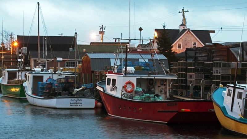 Fishing boats remain at berth in Eastern Passage, N.S. on Monday, Nov. 28, 2011.