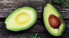 Avocado per day