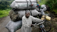 Bosco leaves the charcoal market in Rupango, eastern Congo, Wednesday Nov. 19, 2008. (AP / Jerome Delay)