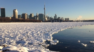 The Toronto skyline is shown on Tuesday, Jan. 13, 2015 (George Stamou / CTV News)