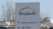 Bonduelle sign