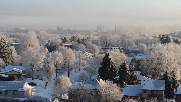 Nancy Gifford sent us this picture of hoar frost coating trees in downtown Kitchener on Wednesday, Jan. 14, 2015. (Nancy Gifford / Twitter)