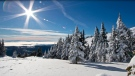 Sun Peaks Ski Resort in Kamloops, B.C., is seen in an image on its website.