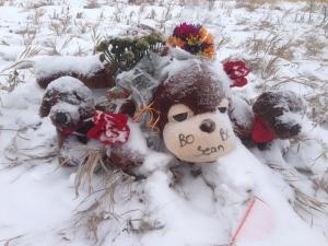 Snowmobile memorial