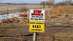 A sign opposing the Keystone XL pipeline is posted in a field near the site where the planned pipeline is to go, in Fullerton, Neb., Friday, Jan. 16, 2015. (AP / Nati Harnik)