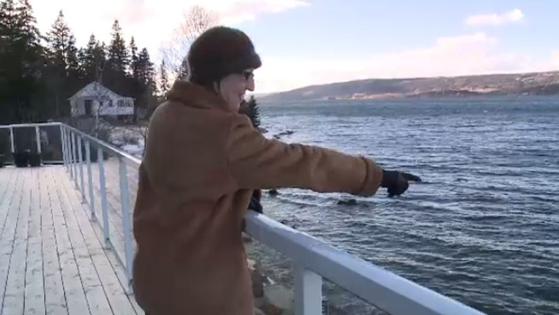Annette Coffin points from her home beside the Bras d'Or Lakes to the place where she first spotted the group of dead mackerel