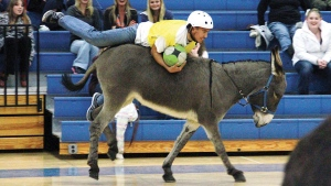 Donkey's try their hooves at some b-ball