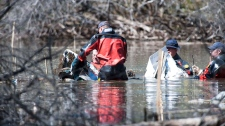 The RCMP underwater recovery team searches the wreckage of one of two plane involved in a mid-air collision, near St. Brieux,Sask. on Sunday, March 13, 2012. (Liam Richards / THE CANADIAN PRESS)