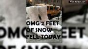 Weathering flurry of jokes instead of blizzard