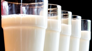 Glasses of milk in a July 31, 2007 file photo. (AP / Michael Probst)