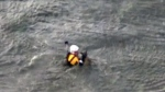 CTV News Channel: Daring aerial rescue of dog