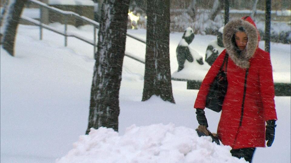A pedestrian treks through a massive snowstorm in Toronto Monday, Feb. 2, 2015.