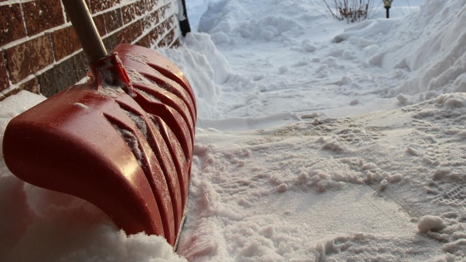 Snow Feb 2, 2015/shovel.jpg