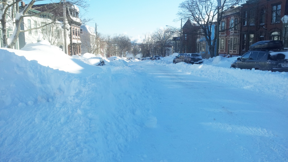 A row of cars sit on a street covered in snow in Saint John, N.B., Tuesday, Feb. 3, 2015. (Darrell Johnston / CTV News)
