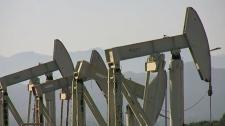Oil sands job survey
