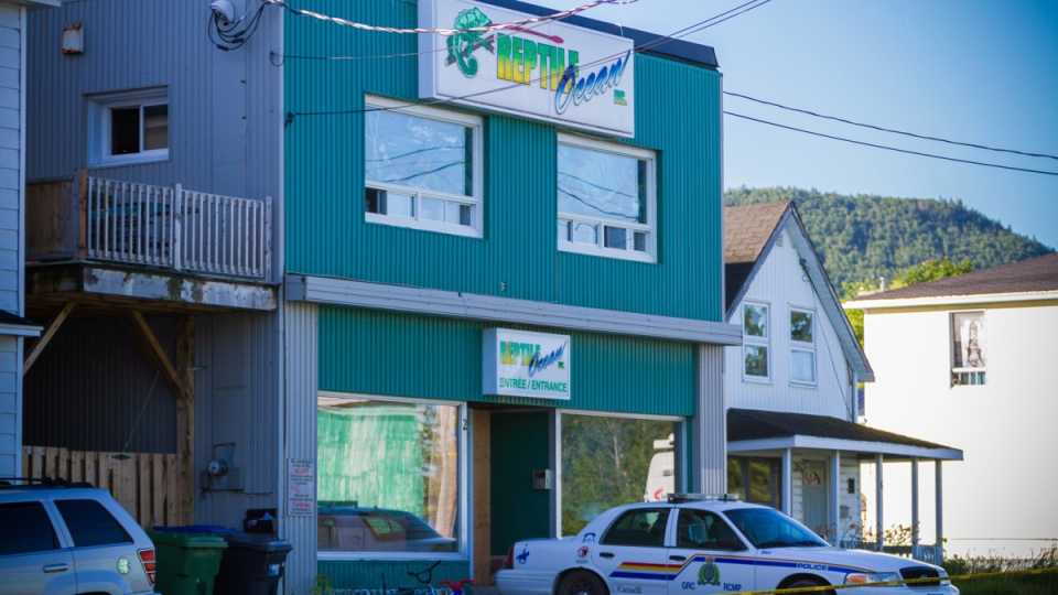 Man Faces Criminal Negligence Charges In Python Case That
