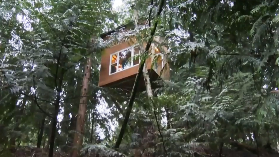 B C Man Calls Tiny Treehouse Home Ctv News