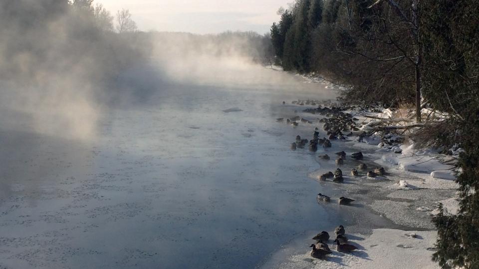 Speed River mist
