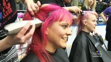 CTV Edmonton: Hair Massacure