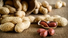 The first treatment to help prevent serious allergic reactions to peanuts may be on the way. A company said Tuesday that its daily capsules of peanut flour helped sensitize children to nuts in a major study.