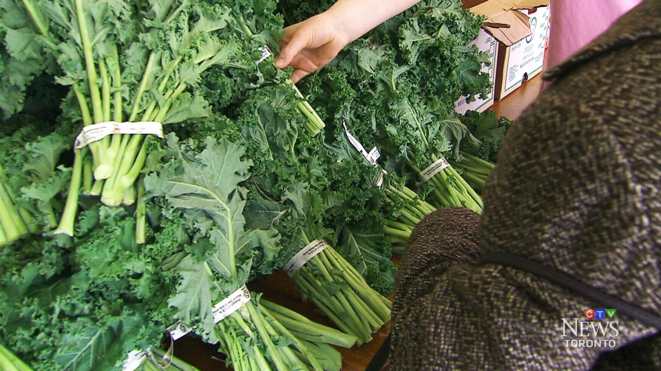 CTV Toronto: Vegetarian food bank