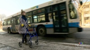 Bus driver refuses to lower mobility ramp for woma