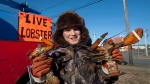Brex Malone, 10, from Shelburne, N.S., displays the wares as he sells lobsters with his grandfather in Dartmouth, N.S. on Friday, Dec. 30, 2011. (Andrew Vaughan / THE CANADIAN PRESS)